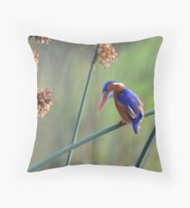 Colours......... Throw Pillow