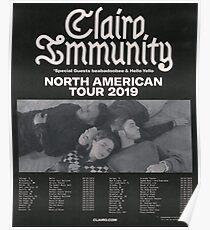 clairo immunity tour poster Poster
