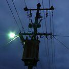 Powerpole by Joan Wild