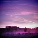 Pink Dawn, The Cotswolds, England by Giles Clare
