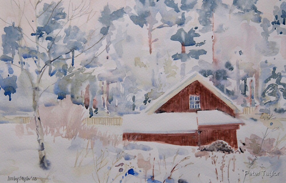 Little red building in the forest by Peter Lusby Taylor