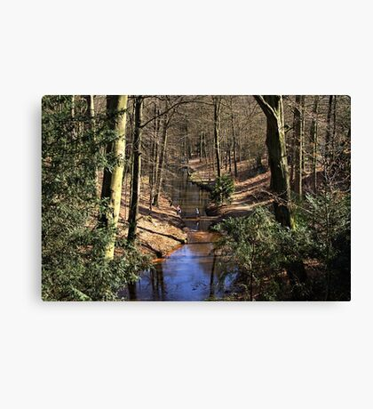 Spring Stream in the Forest Canvas Print