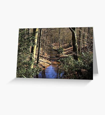 Spring Stream in the Forest Greeting Card