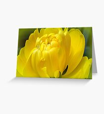24 Carat Greeting Card