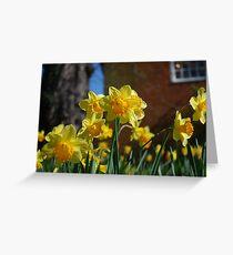 Farnham in Springtime No2 Greeting Card