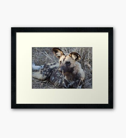 Stop Laughing At Me ! Framed Print