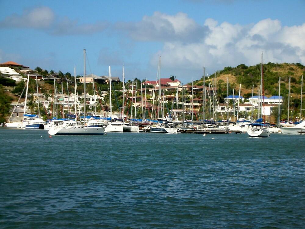 A dozen masts  by islefox
