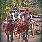 Clydesdales by Kym Howard