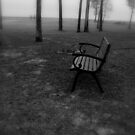 The Fog  by Dawn di Donato