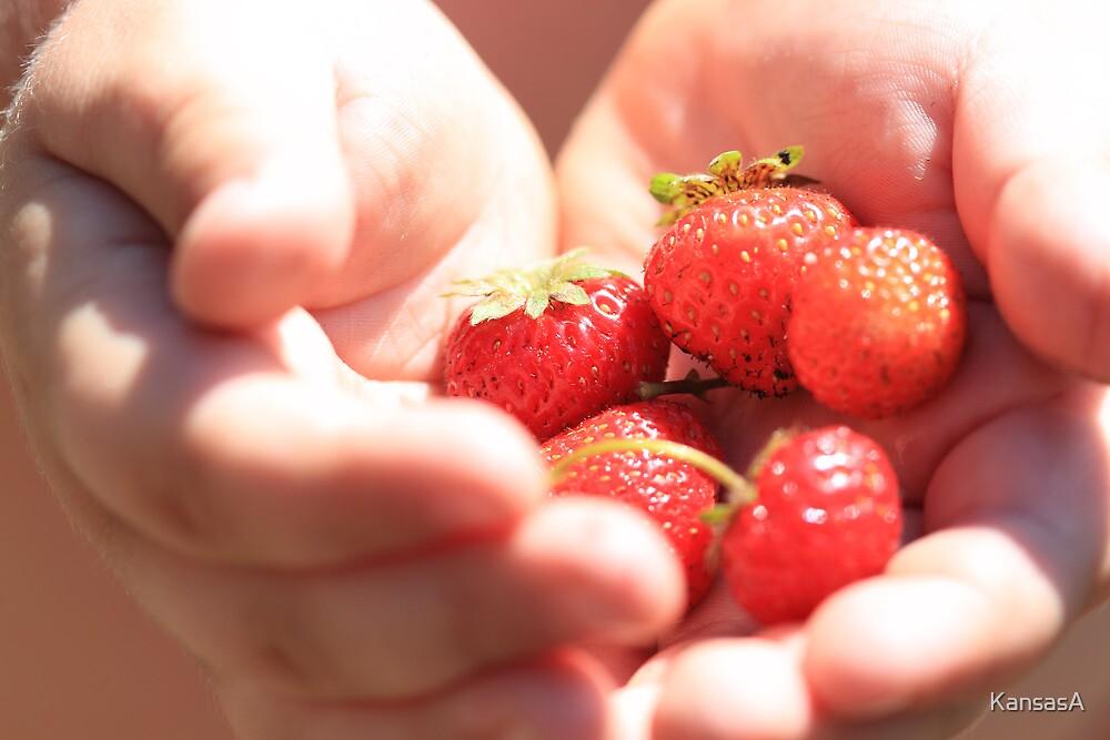 Fresh Fruit from the Vine by KansasA