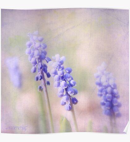 Purple April Poster