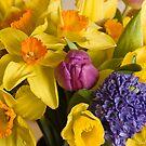A Spring Bunch by Lynne Morris