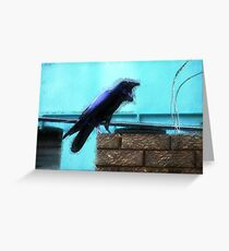 Urban Raven 1 Greeting Card