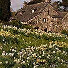 Spring at Cotehele by moor2sea