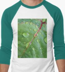After the rain Baseball ¾ Sleeve T-Shirt