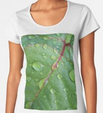 After the rain Premium Scoop T-Shirt