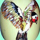 European Goldfinch by Heidi Mooney-Hill