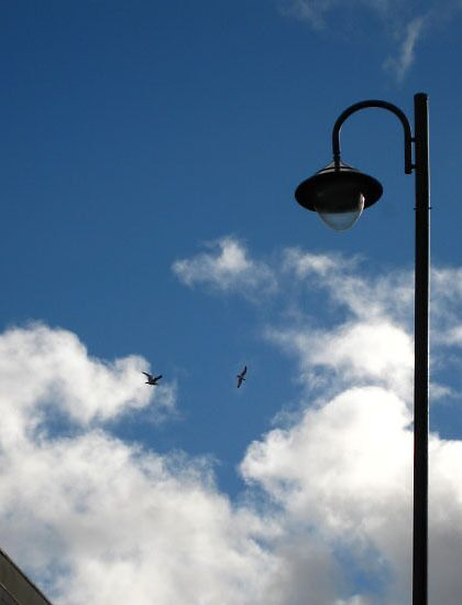 Street lamp by millymuso
