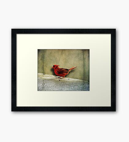 Time To Eat Framed Print