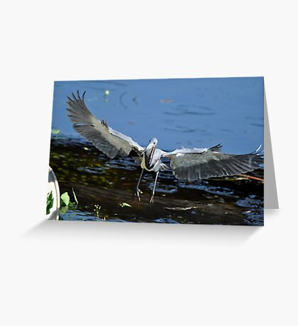 Heron on board Greeting Card