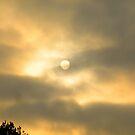 Louisiana Daybreak by BShirey