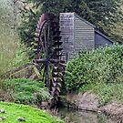 Waterwheeel by Dean Messenger
