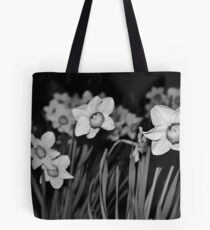 Evening Daffodils - Lindfield Tote Bag