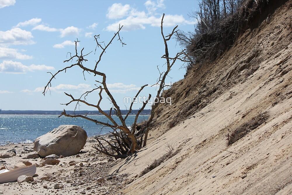 surreal beach shot by mattypaq