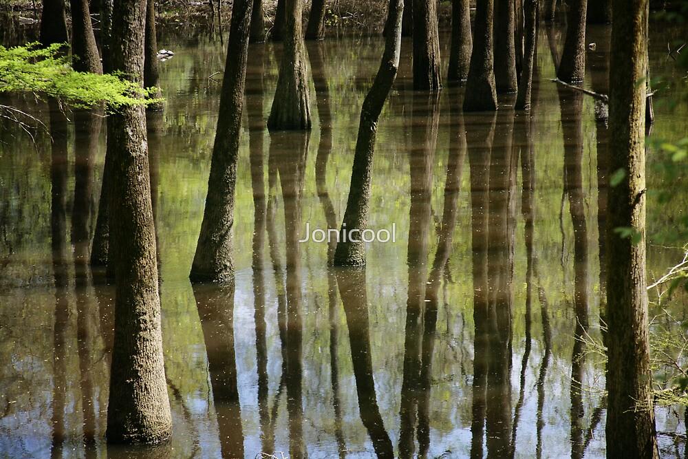 Reflections by Jonicool