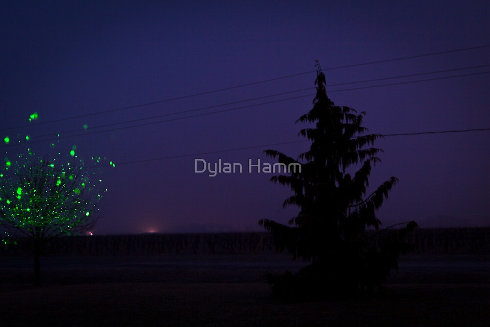 WinterSpring by Dylan Hamm