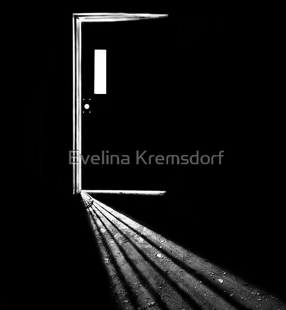 In the Light of Darkness by Evelina Kremsdorf