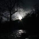 Dark Valley by Paul  Green