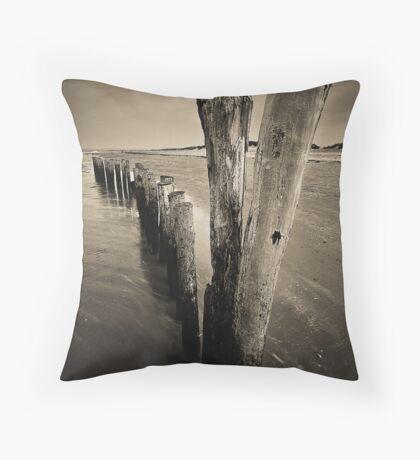 Wooden Poles Throw Pillow