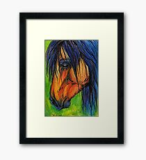 the long mained horse portrait Framed Print