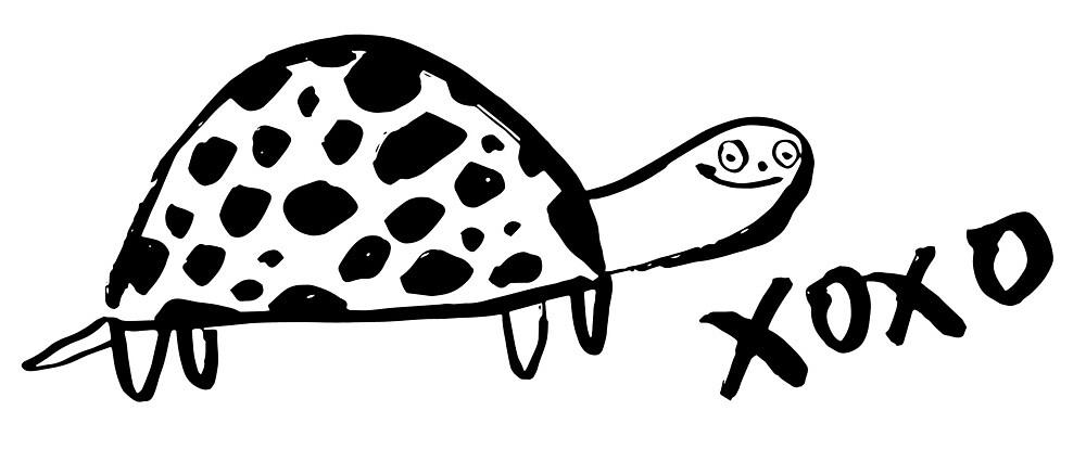 Turtle Man by jillianailsa