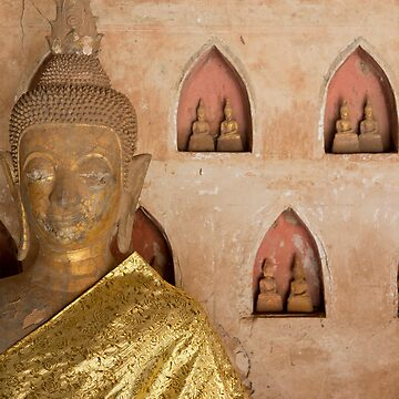 Buddha with calm eyes. by Fergyphotos