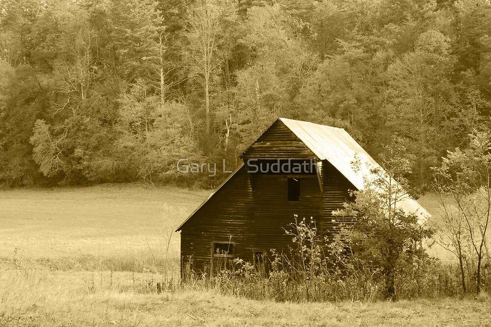 Caughron Barn  by Gary L   Suddath