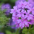 Purple Flower by DebbieCHayes