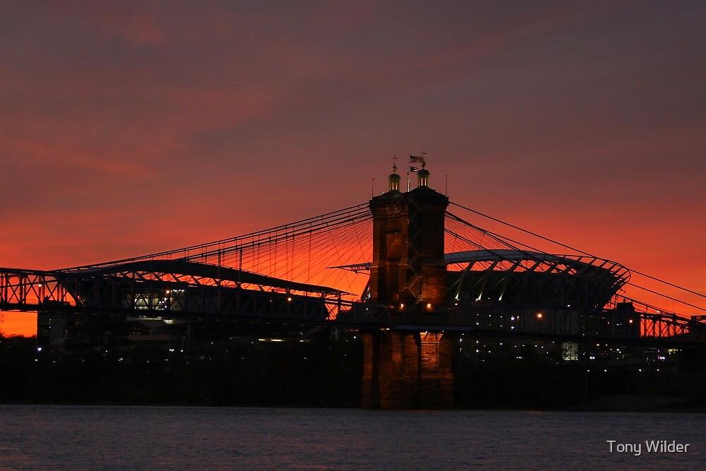 Paul Brown Stadium and Roebling Bridge by Tony Wilder