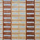 Council Flat Windows by Joan Wild