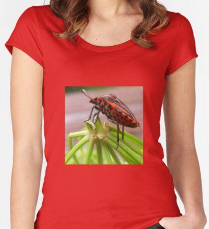 Meet Hector! Women's Fitted Scoop T-Shirt