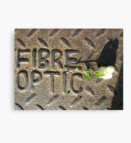 Fibre Optic (mistletoe on metal) Canvas Print