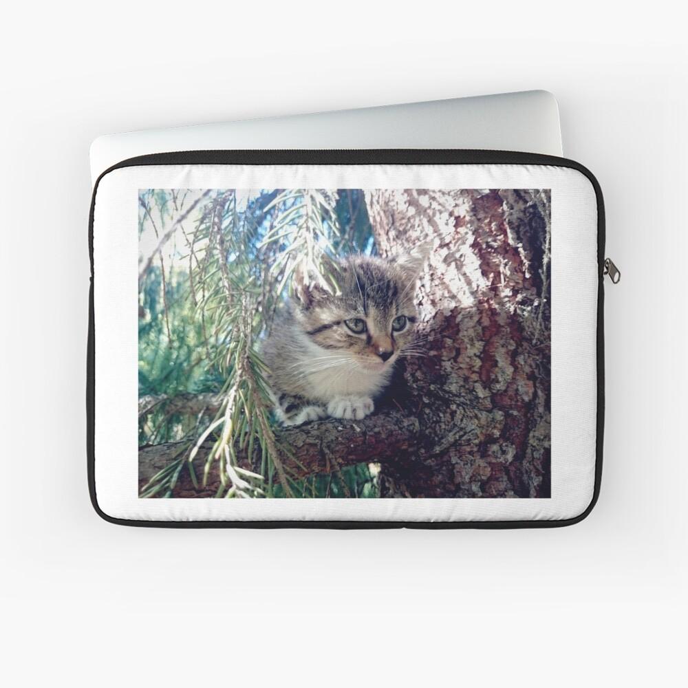 Tiger auf Baum Laptoptasche