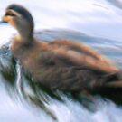 Digi Duck by LBrammer