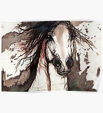 arabian horse impressions Poster