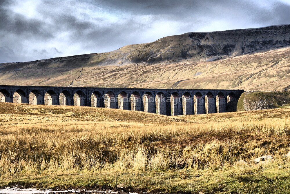 Ribblehead Viaduct by Sandra Cockayne