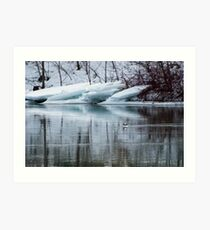 Bufflehead Duck and Ice Formation, Niagara River, Ontario Art Print