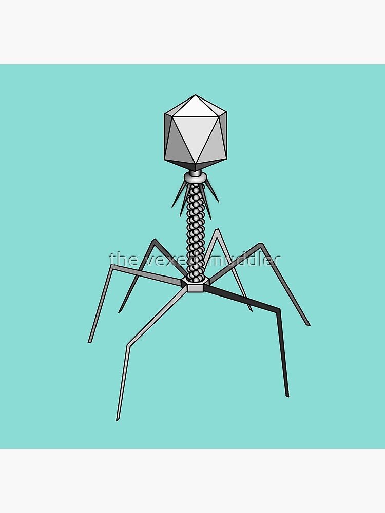 T4 bacteriophage virus by thevexedmuddler