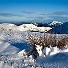 Winter Drifts by Paul Whittingham