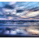 Night Sky by shell4art